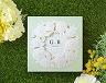 結婚式招待状(手作りキット) ミントA【Name on Card タイプ】 メイン画像