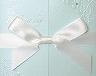結婚式招待状(手作りキット) ブリリアント・ブルー サポート画像2